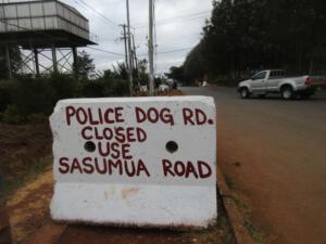 Polizeihund Straße